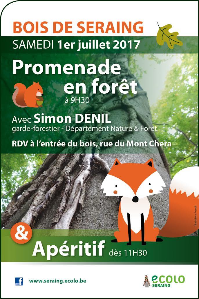 Bois de Seraing – Promenade en forêt